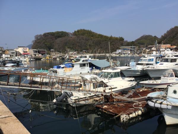 三津浜港IMG_5012_convert_20170319140707