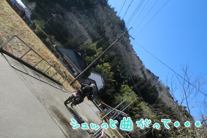 CIMG7383.jpg