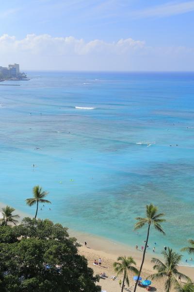 HAWAII家族旅行の写真 03/11/2017