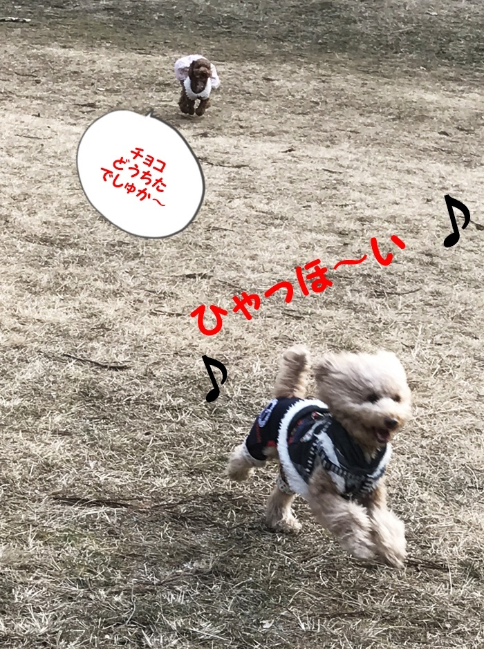 IMG_1335箕面.jpg