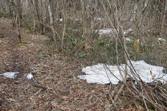5 みのこし峠から先の稜線沿いには雪が 13%