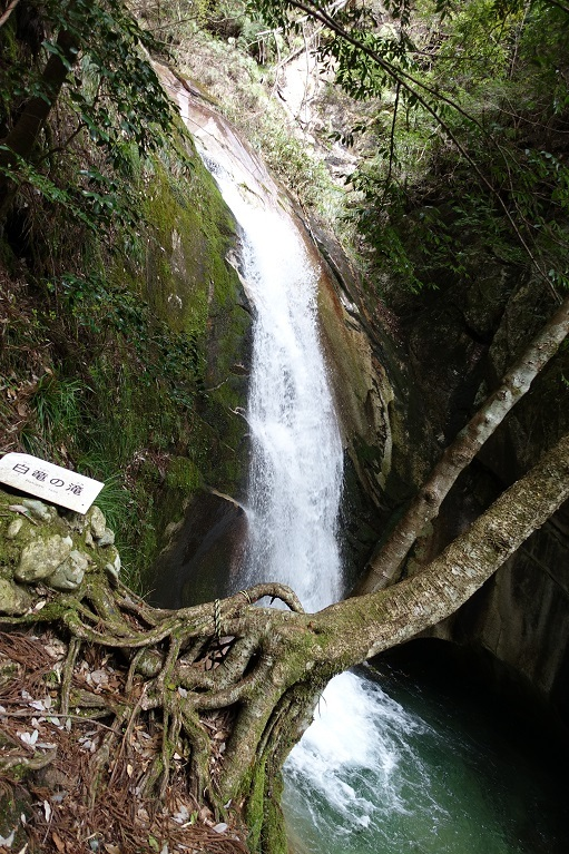 7 白龍の滝 14%