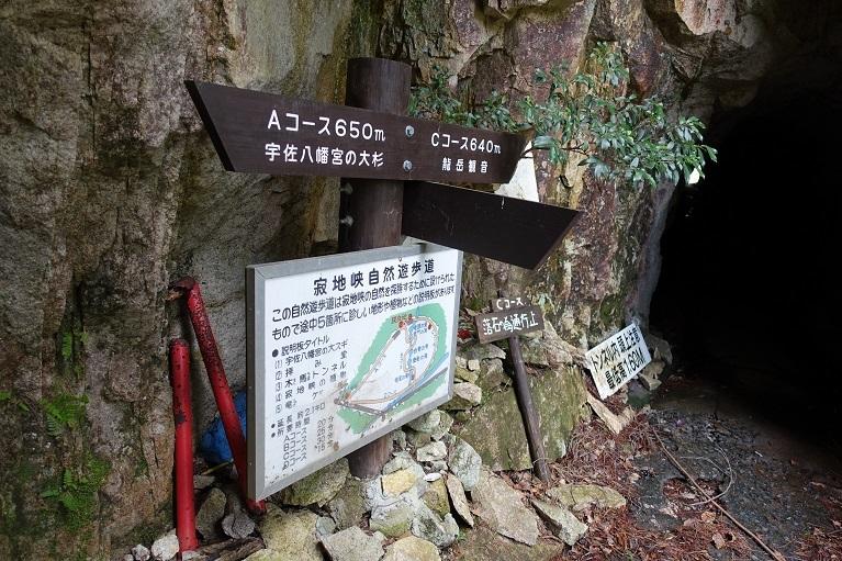 12 木馬トンネルの分岐案内 14%