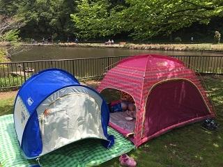 こども自然公園テント