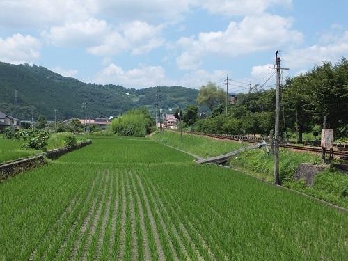 kitigahara (2)