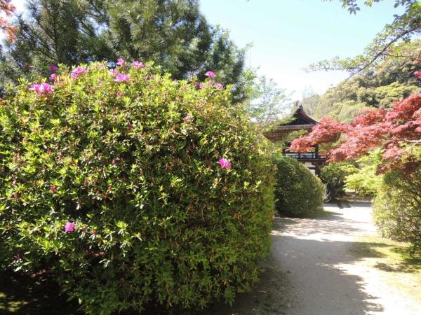 長岳寺 そうめん (16)