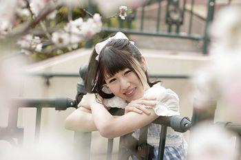 nozomi-03.jpg