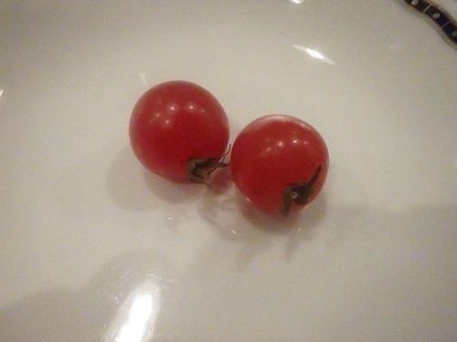 プチトマト 0322