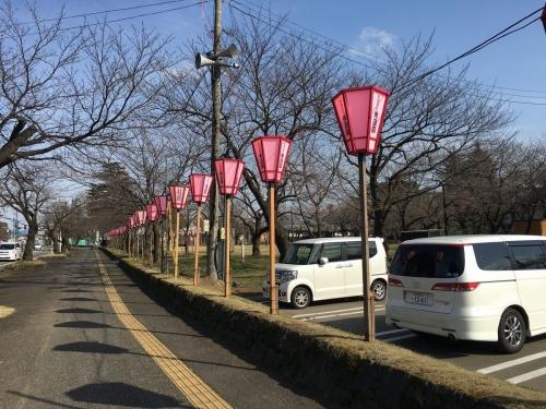 2017-03-25ぼんぼり2