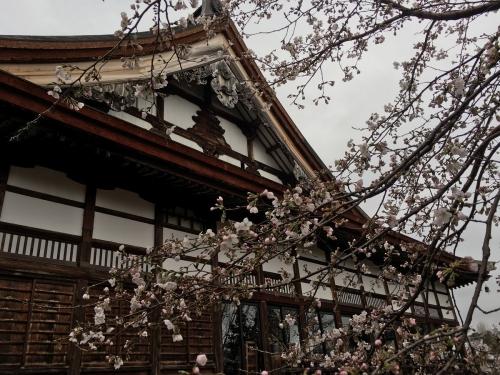 2017-04-09浄興寺