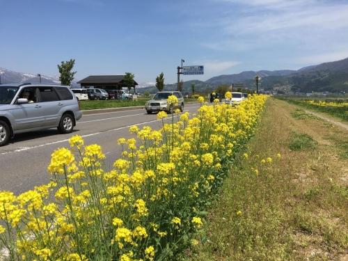 2017-05-04国道沿い