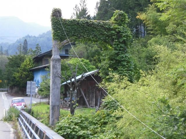 栂橋 (4)