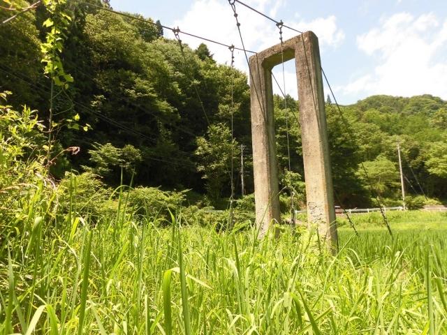 八坂小菅の水管吊橋② (2)