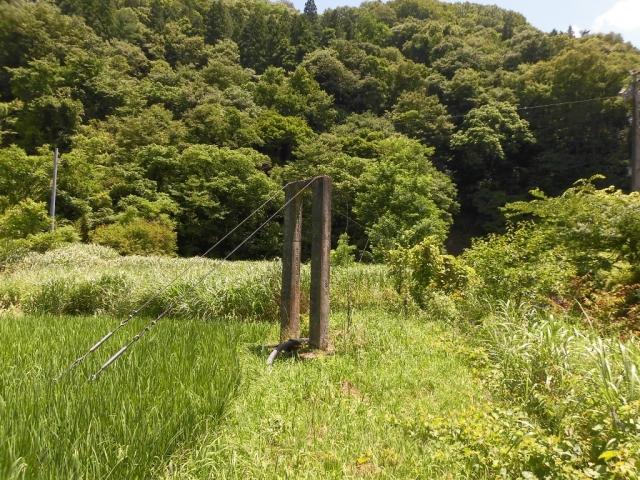 八坂小菅の水管吊橋② (4)