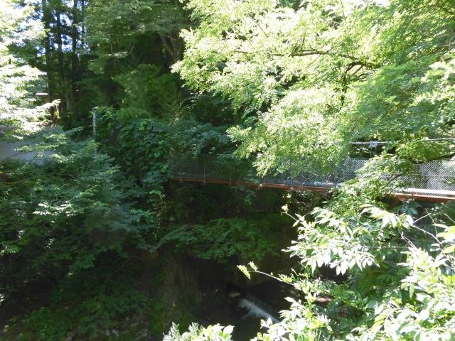 八坂満仲の水管吊橋 (6)