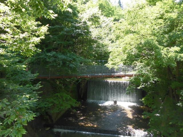八坂満仲の水管吊橋 (7)
