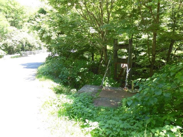 八坂満仲の水管吊橋 (4)