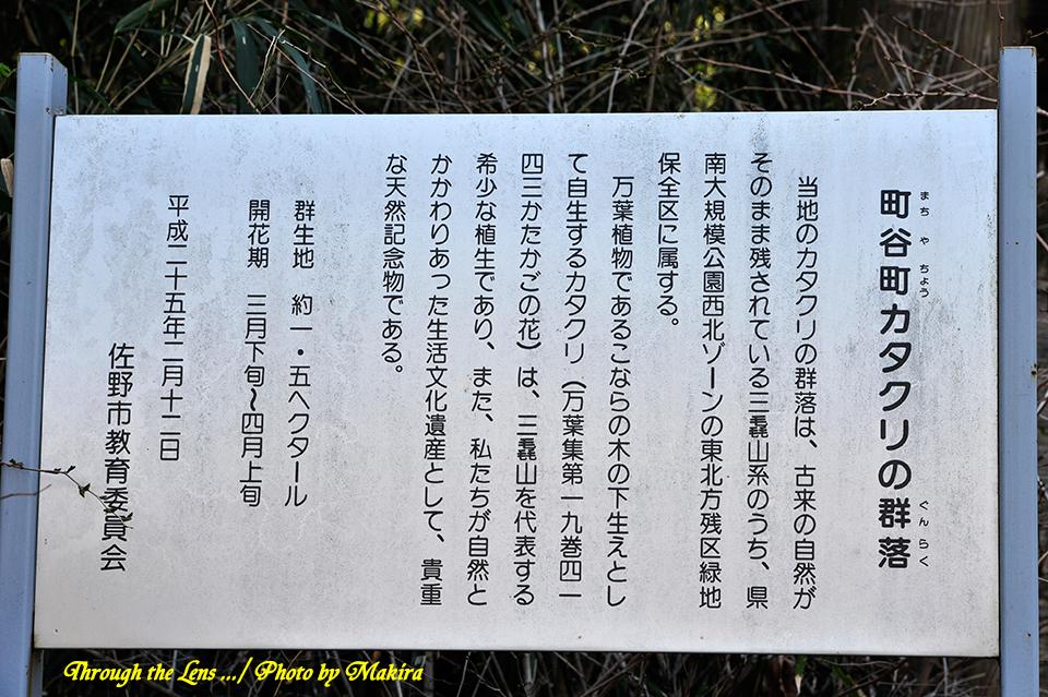 万葉自然公園カタクリの里説明1
