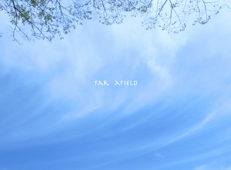 sky5.jpg