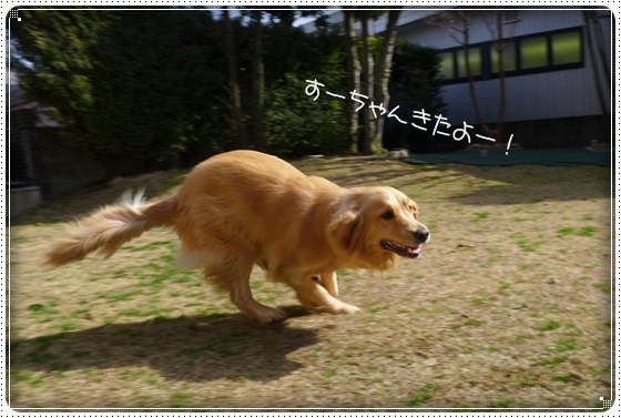 2017,2,28お散歩2
