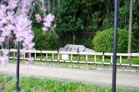 nakaragi_road_1.jpg