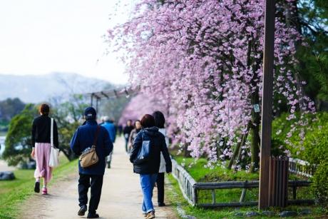 nakaragi_road_2.jpg