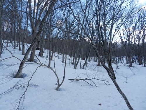積雪状況A地点②・4月13日