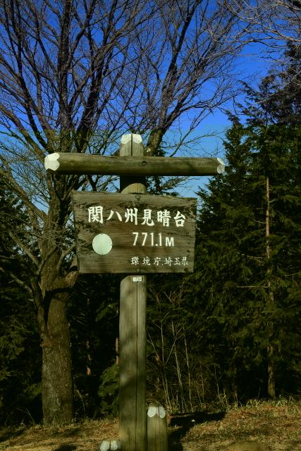 IMG_3625-JPEG1.jpg