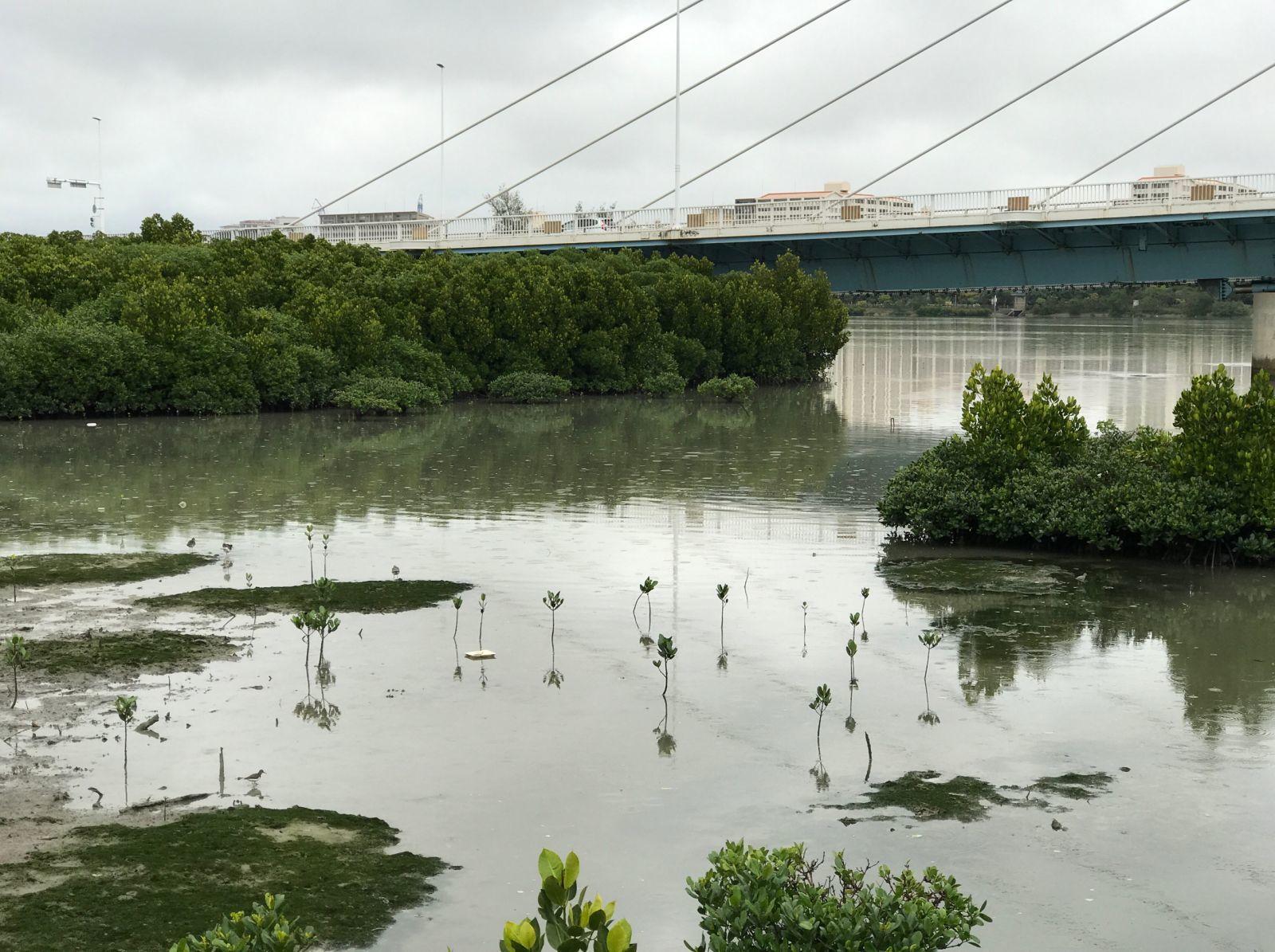 漫湖水鳥湿地センター
