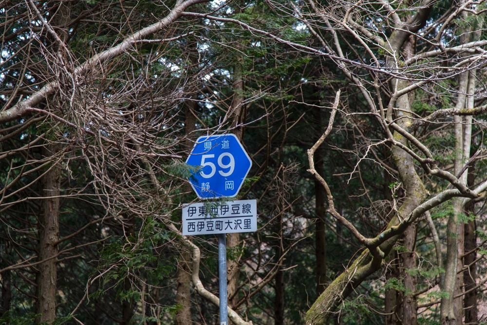 DSC_20178469.jpg