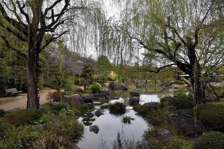 大仙日本・春 (1)
