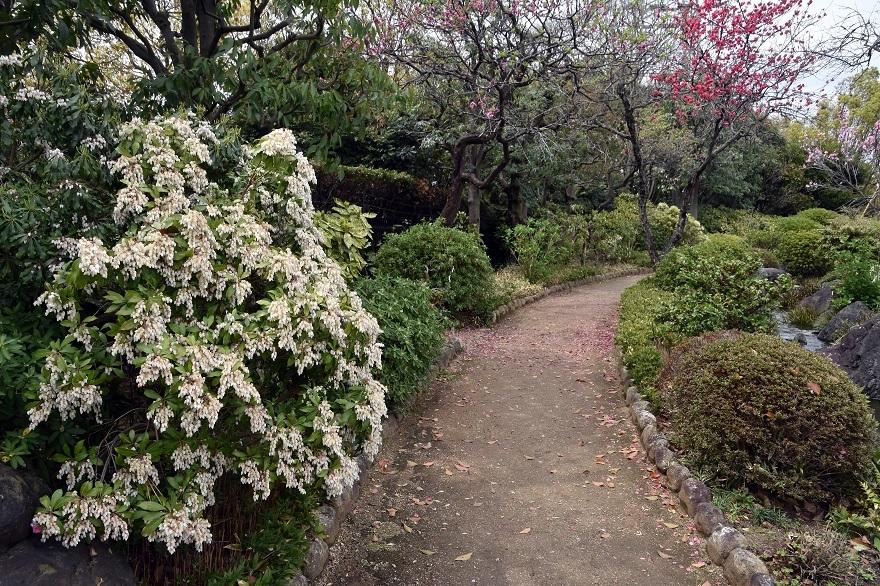 大仙日本・春 (3)