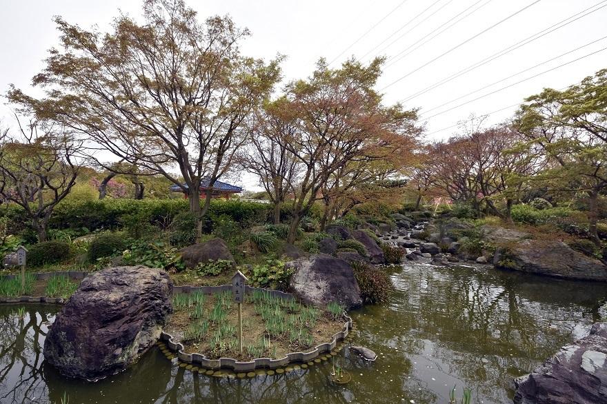 大仙日本・春 (7)