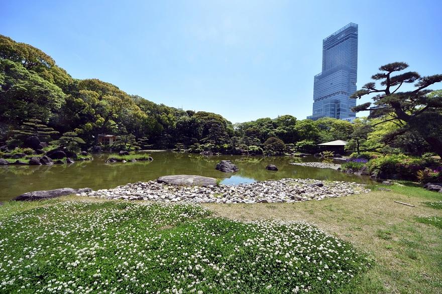 新緑の慶沢園 (0)