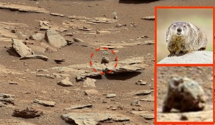 火星の大地にまた「巨大ネズミ」