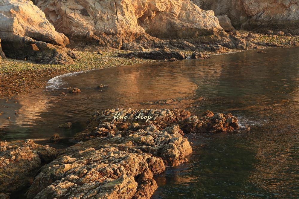 夕照の岩礁