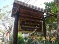 伝統紙の店