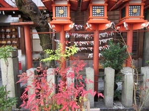 赤色が生える神社