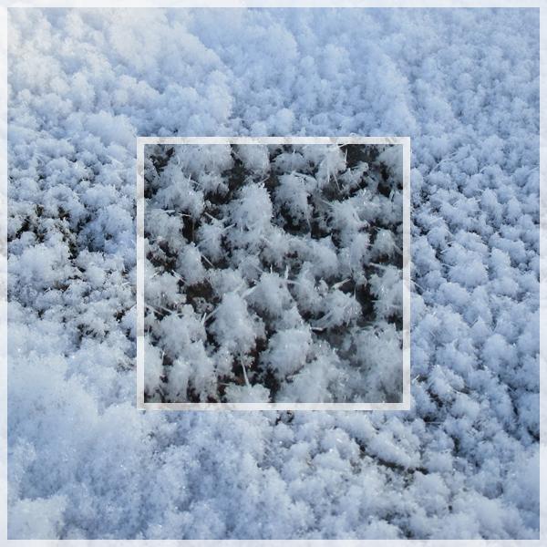 2017年3月8日 雪の結晶