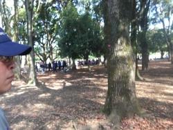 a代々木公園 1n