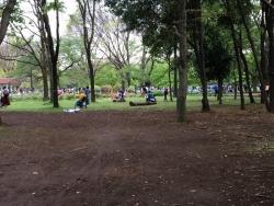 a代々木公園 3n