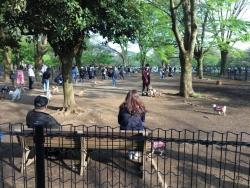 a代々木公園 4n