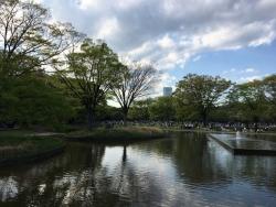 a代々木公園 5n