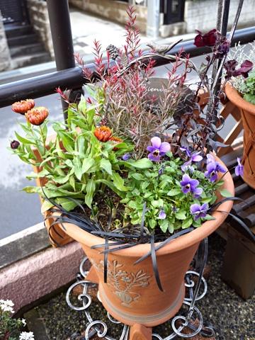 gardening283