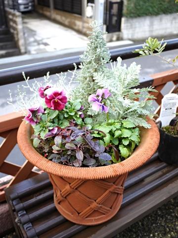 gardening284