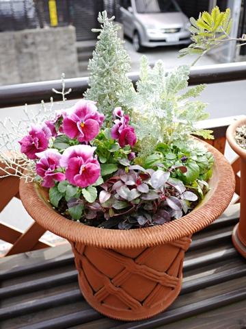 gardening289