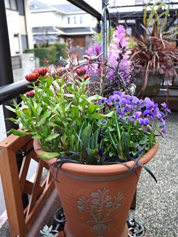 gardening293