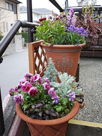 gardening294