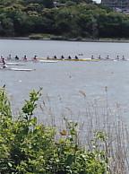 佐鳴湖西岸ボート