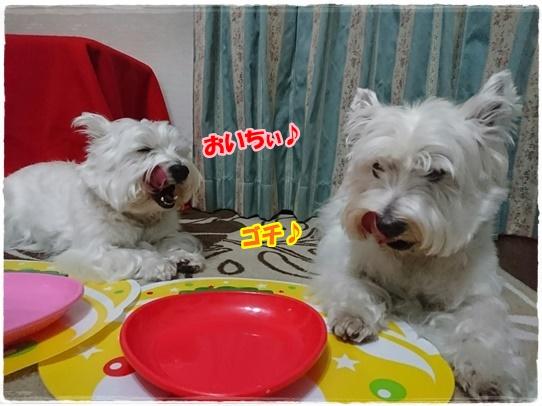 azuki4_20170507023809ec7.jpg